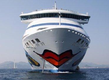 A friendly cruise ship?